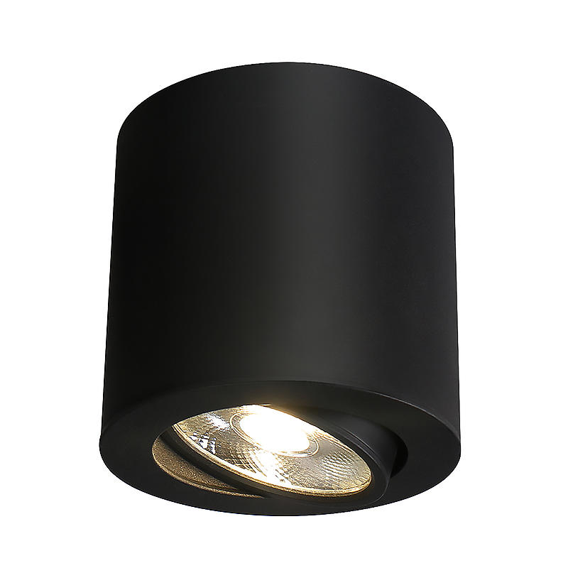 PNY-Professional Ceiling Lights Spotlights Best Spotlight Supplier