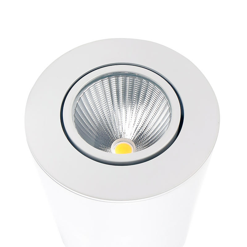 convenient installed surface spot light customized for living room-1