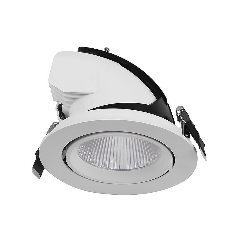 GIMBAL DOWNLIGHT TRUNK DOWNLIGHT ZOOM DOWNLIGHT SHOP LIGHT 12W 20W 30W 36W