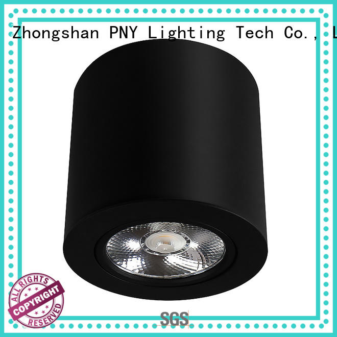 PNY convenient ceiling lights spotlights 50w for concerts