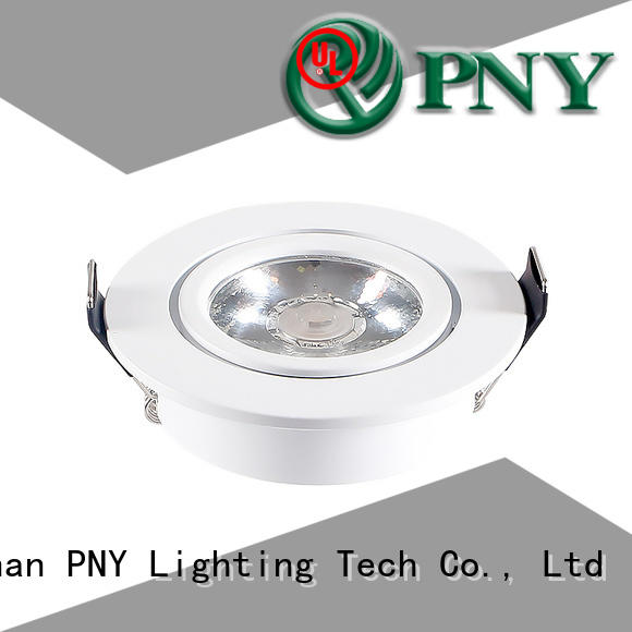 PNY waterproof rechargeable spotlight from China for family party