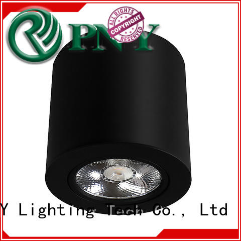 PNY Attractive surface mounted led spotlights from China for living room
