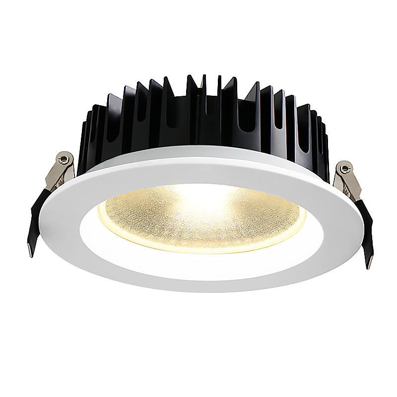 PNY-Best Adjustable Led Downlights Decorative Recessed Led