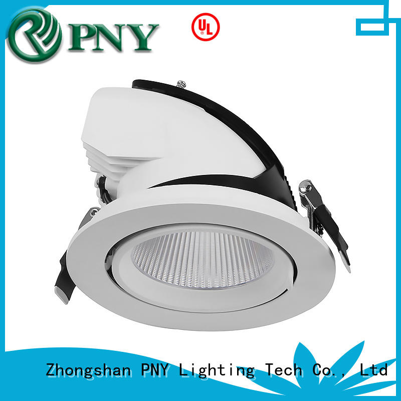 PNY perfect effects narrow beam led spotlight for big performance