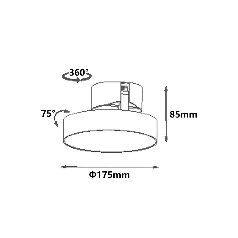 16W LED Surface Mounted Downlight LXS0291