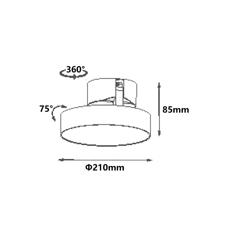 20W LED Surface Mounted Downlight LXS0291