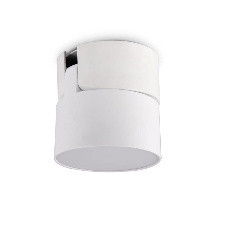 product-25W LED Surface Mounted Downlight LXS0587B-PNY-img