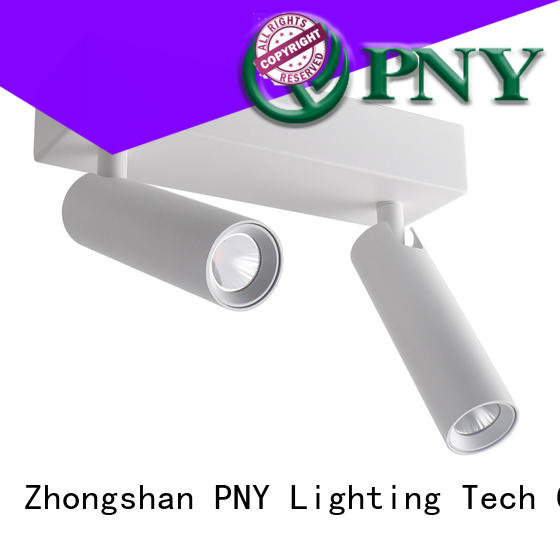 PNY led track light customized for living room