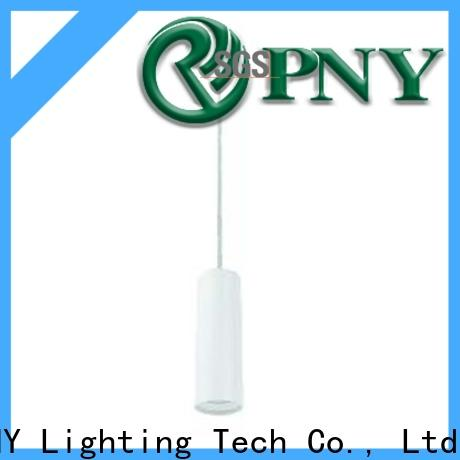 PNY Pendant light factory price for dining room