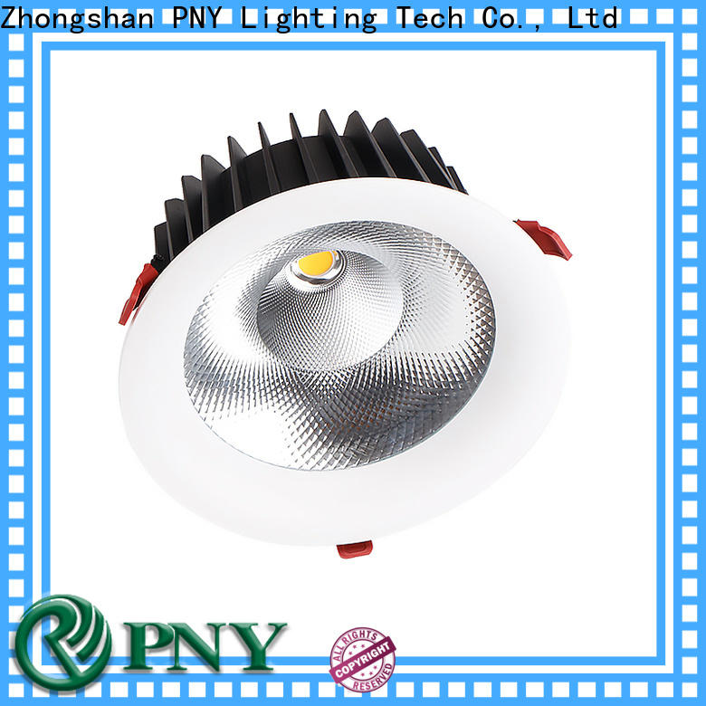 PNY perfect effects recessed spotlights design for family party