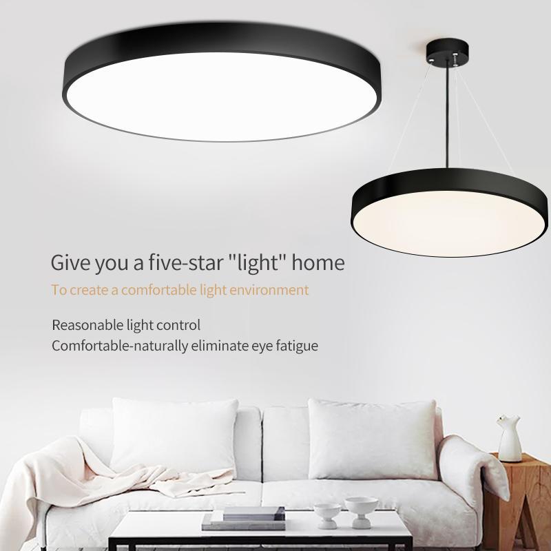 291B large disc ceiling light