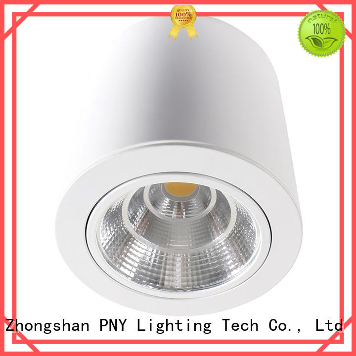 40w led lamp spotlight recessed for theaters PNY